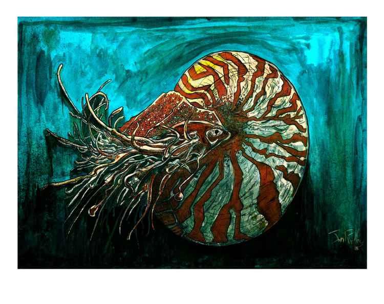 Nautilus -