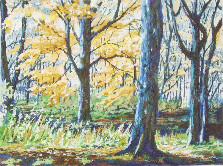 Trees in Autumn - Image 0