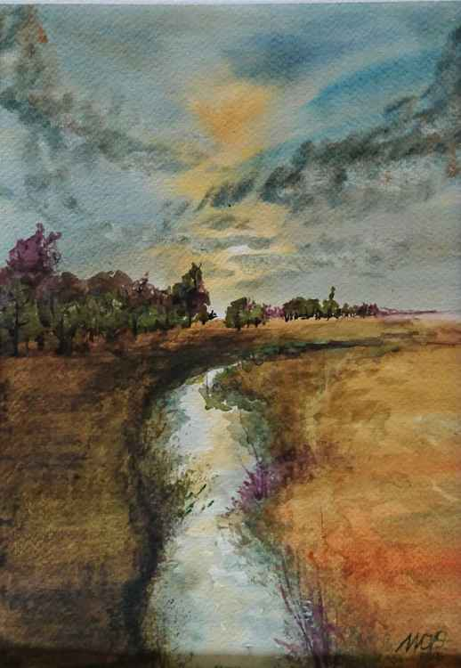 Canal in wheat field