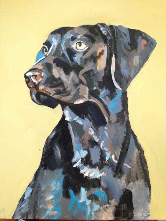 Abstract Dog Painting -