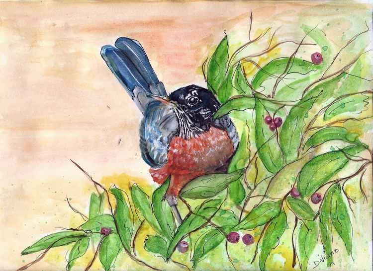 Spring Robin -