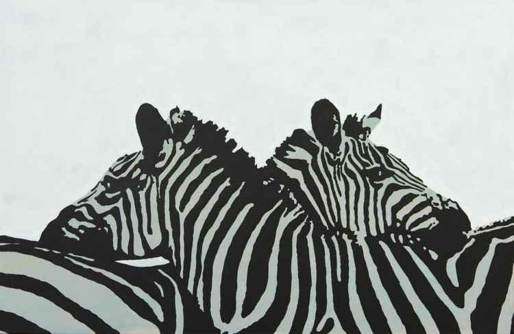 Arctic Zebras -