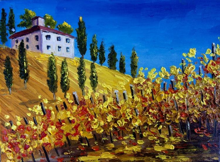 Tuscany vineyards - Image 0