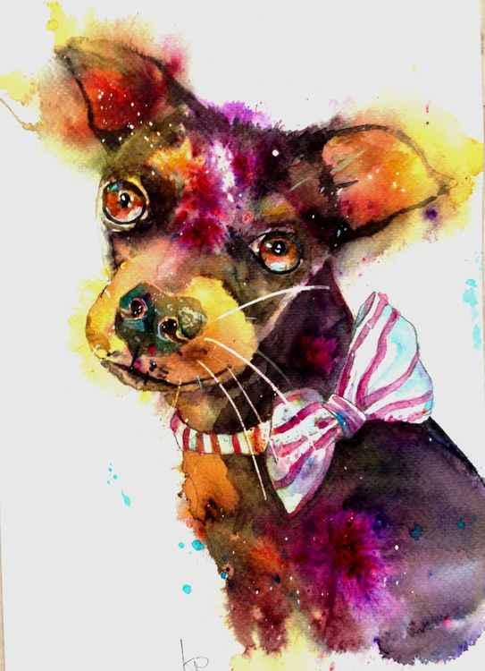 Dog & Bow