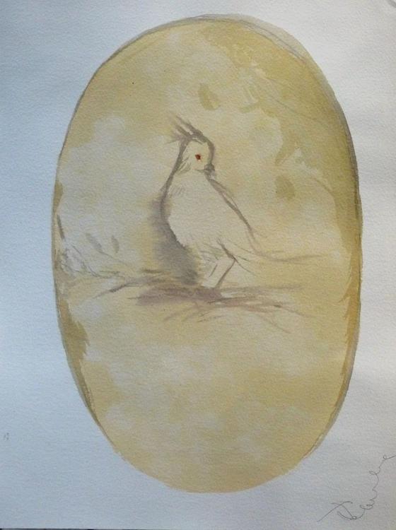 Birds of Carros #36, 31x41 cm - Image 0