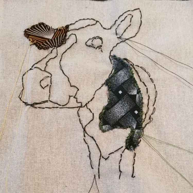 African Cow -