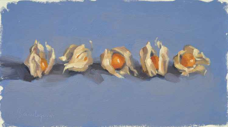 Commissioned artwork: Physalis on a blue background II -