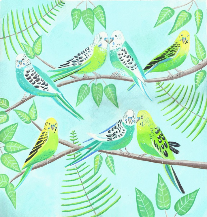 The Budgie Party - Image 0
