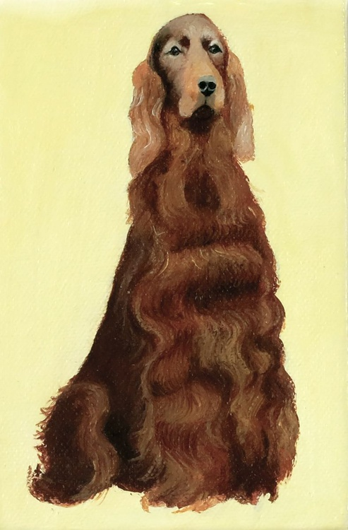 Irish Red Setter in Ivory - Image 0