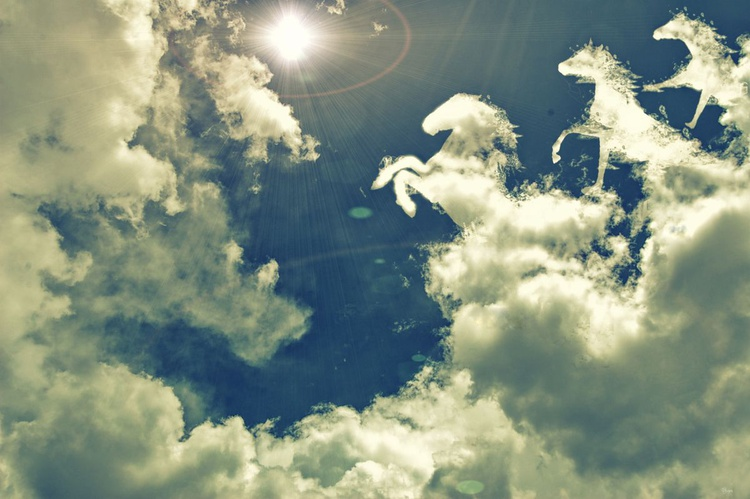 Horses clouds - Image 0
