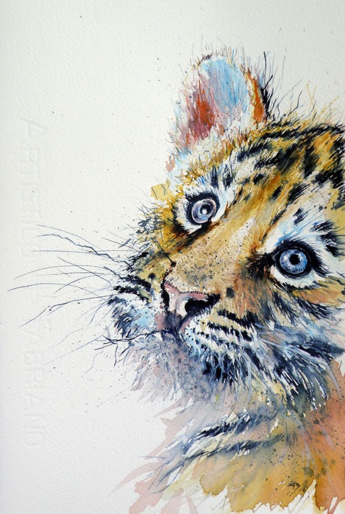 Tiger cub - Image 0