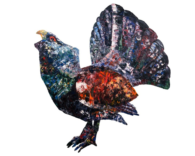 Capercaillie - Image 0