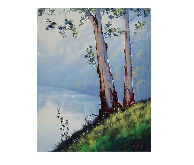 """"""" River Gum trees """" Australia -"""