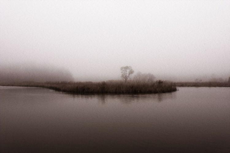 Foggy Day - Image 0