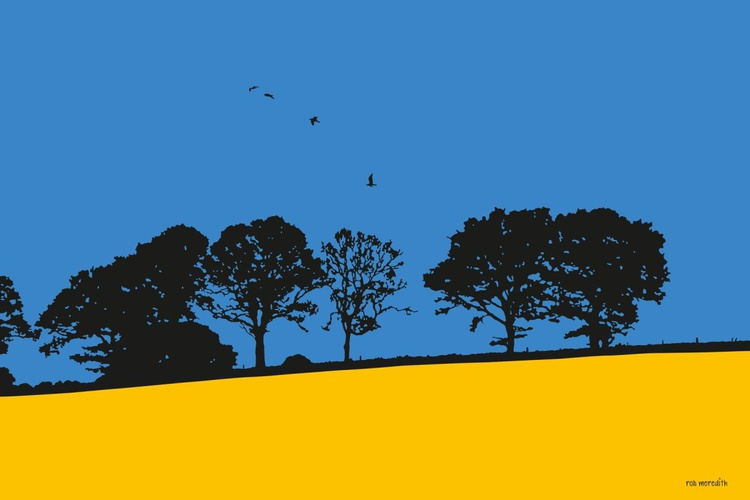 Rapeseed Field Cradley - Herefordshire - Image 0