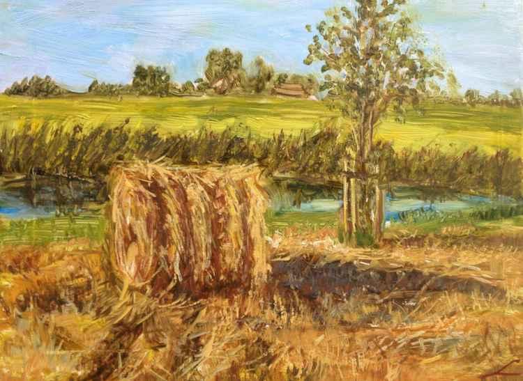 Haystack in Westland -