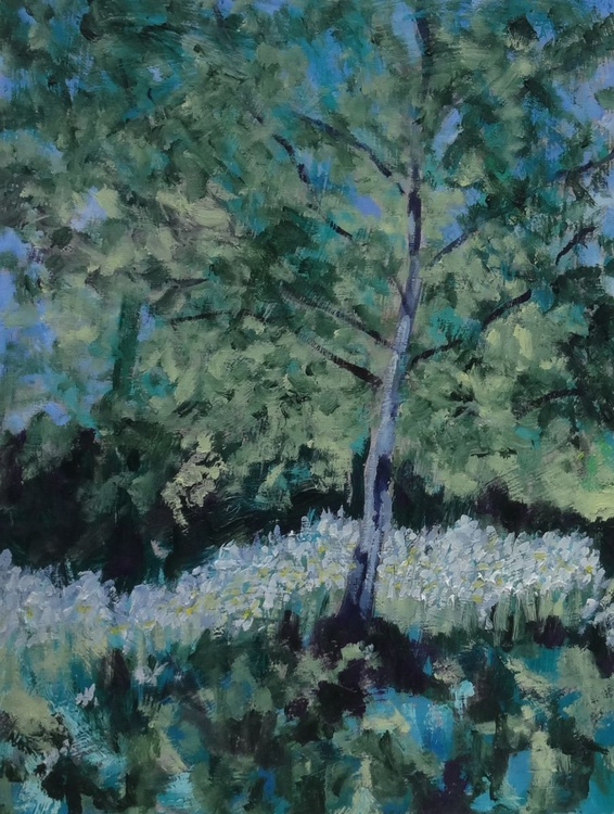 Silver Birch and Daisies - Image 0