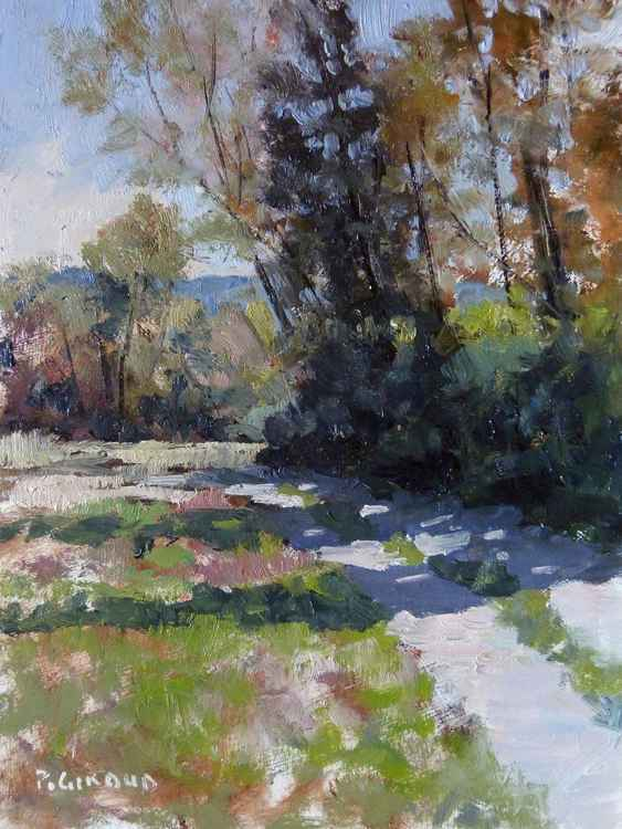 Path in Haute-Provence -