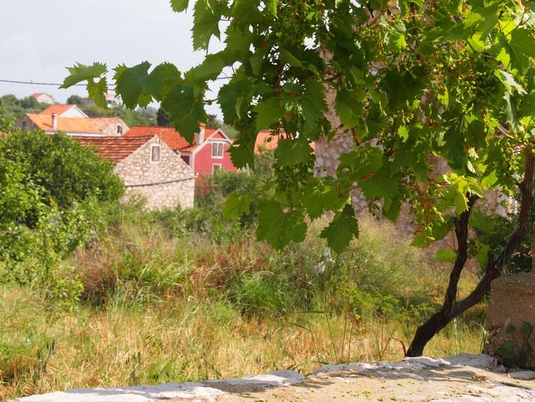 Mediterranean summer scene - Image 0