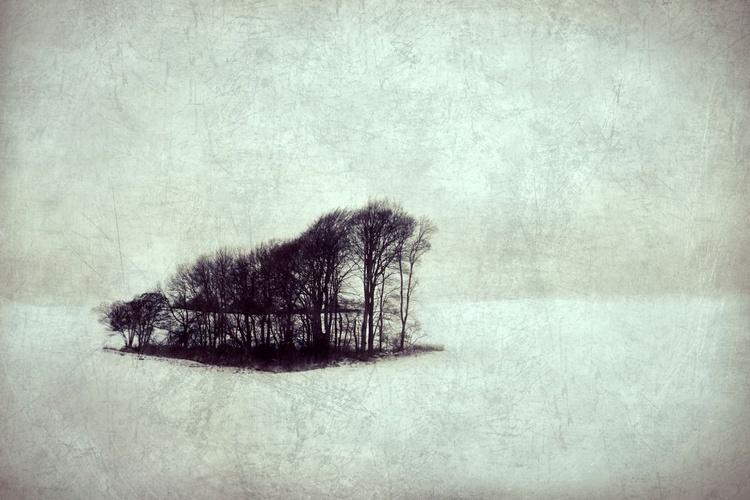 Cold - Giclee print - Image 0