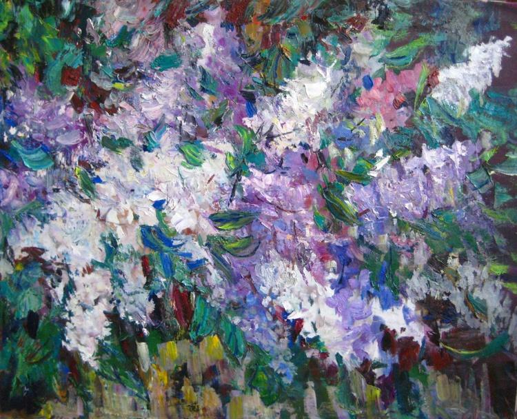 my lilac - Image 0