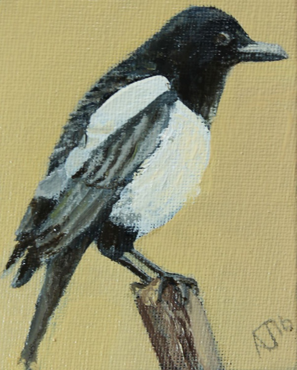 Magpie Miniature + Easel - Image 0