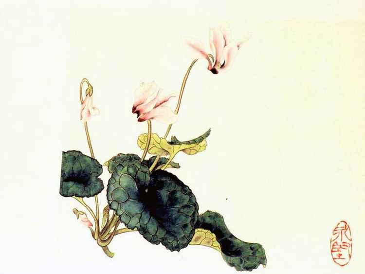 Flower II -