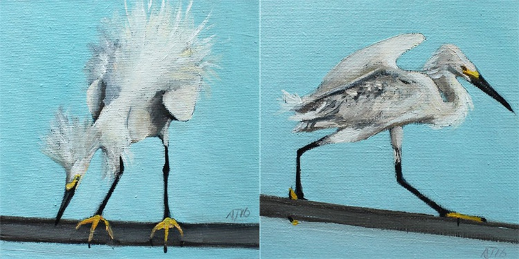 Snowy Egret Diptych - Image 0