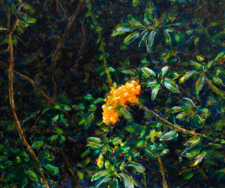 Pyracantha -  acrylic on canvas -