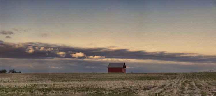 On the American Prairie -