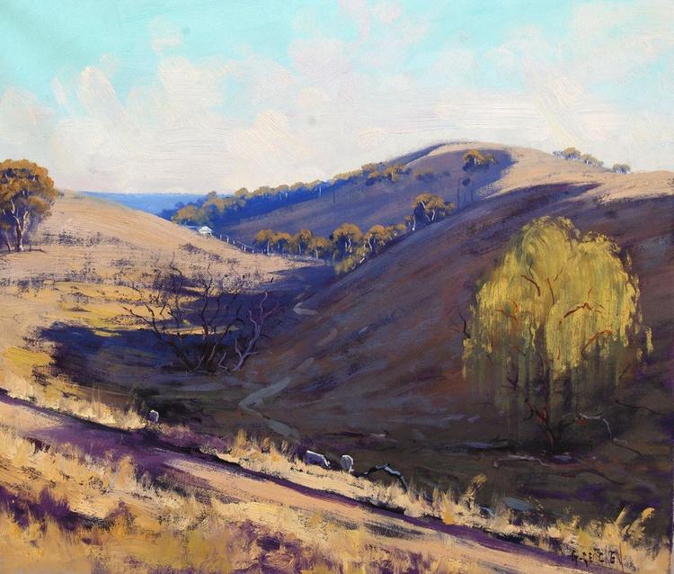 Afternoon light Kanimbla Valley Australia - Image 0