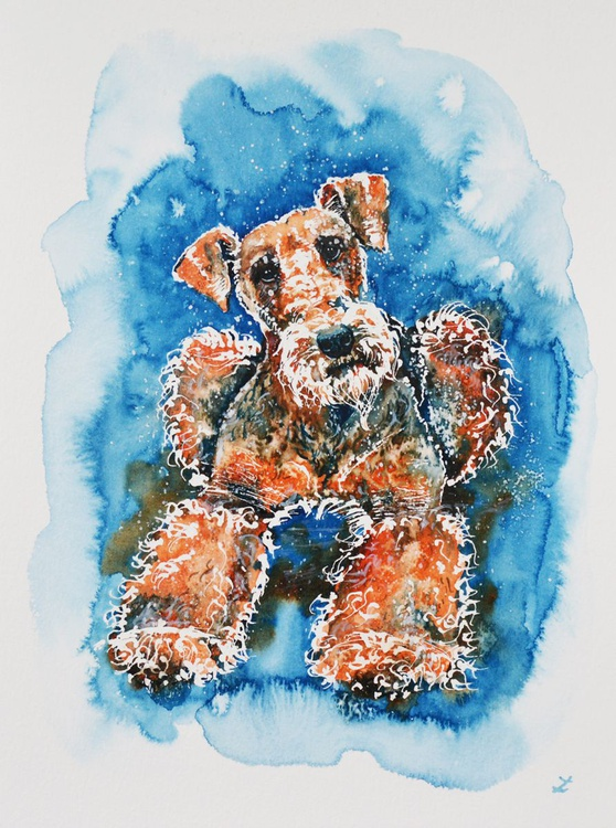 Airedale Terrier - Image 0