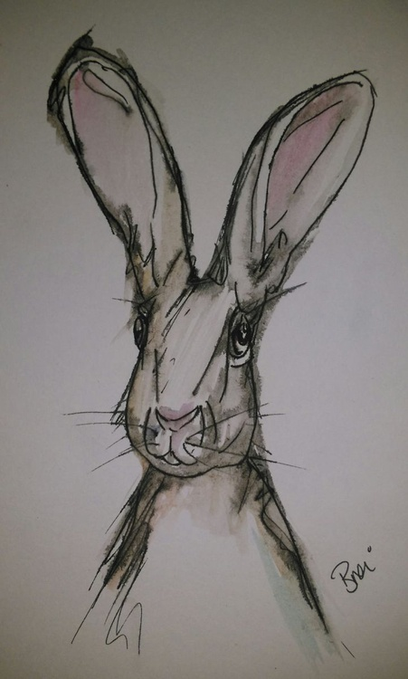 Hare Removal - Image 0