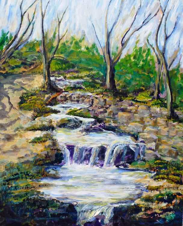 Fern Dell Creek Noon -