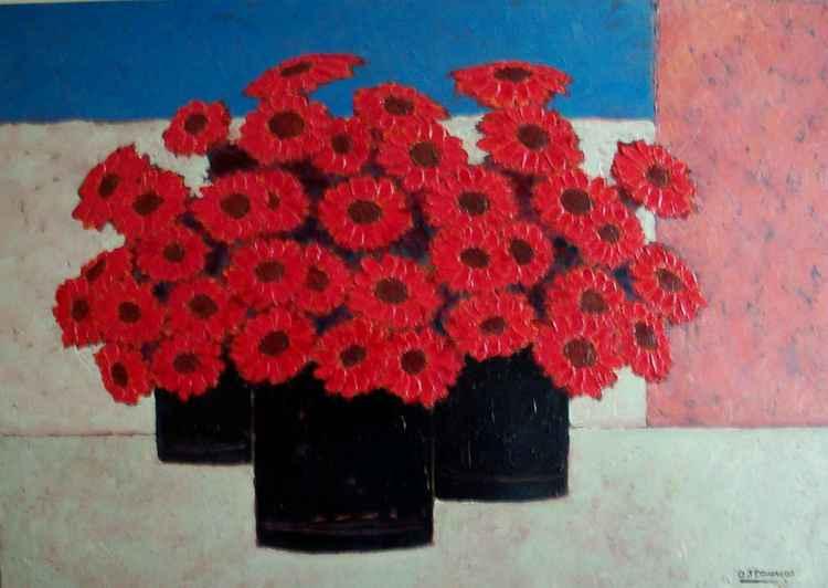 Barberton Reds