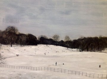 Hampstead Heath In Winter