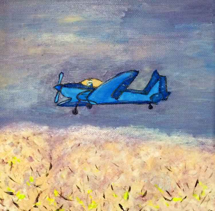 BLOSSOM ANSWER- BLUE GARDEN 66 -