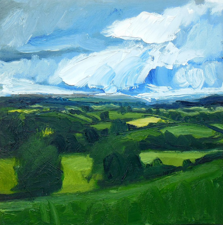 Fields, Sky and Distant Hills from Heversham Head - Image 0