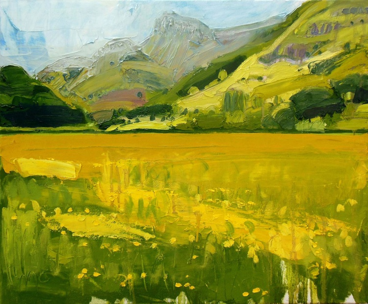 Buttercup Fields and the Langdale Pikes - Image 0