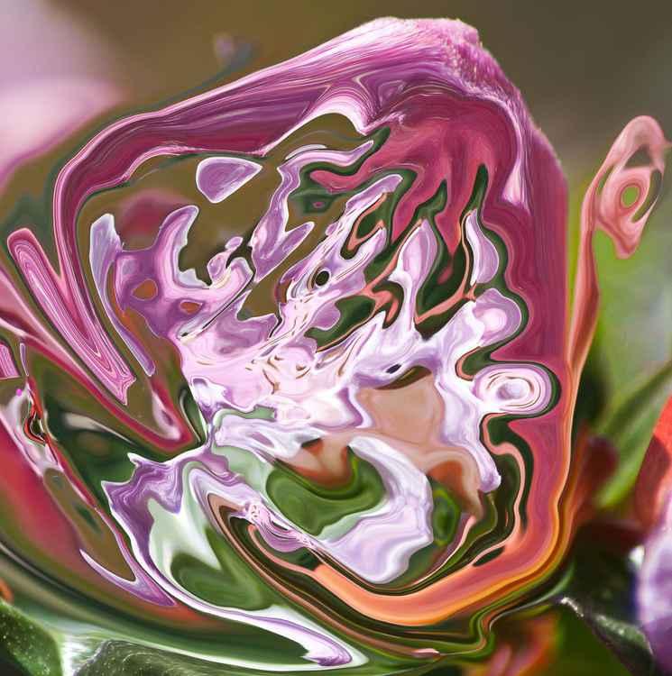 violet lilac shades