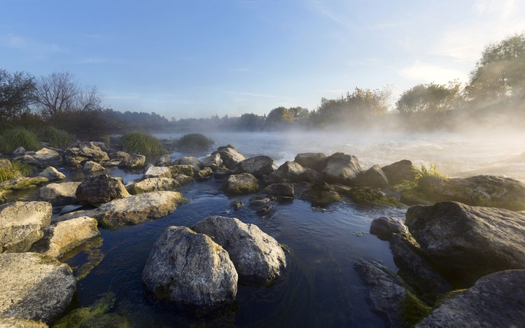 Sunny Morning On The River Stream - Image 0