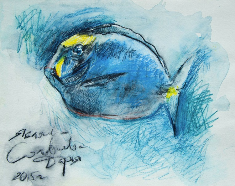 Tropical  blue fish - Image 0