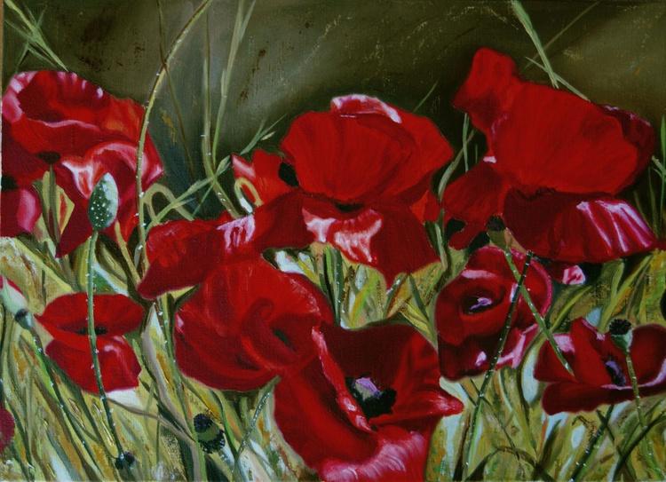 Poppies, Original Oil Painting - Image 0