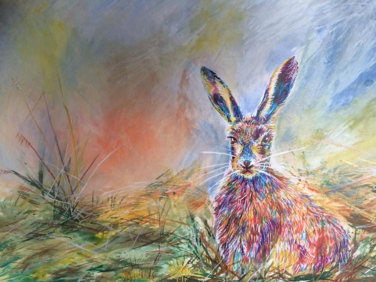 field Hare 2016 - Image 0