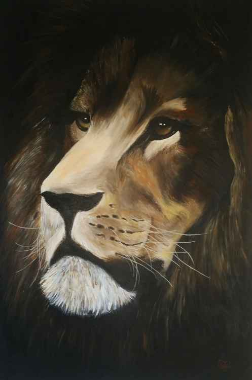 Out of the Shadow - Lion -