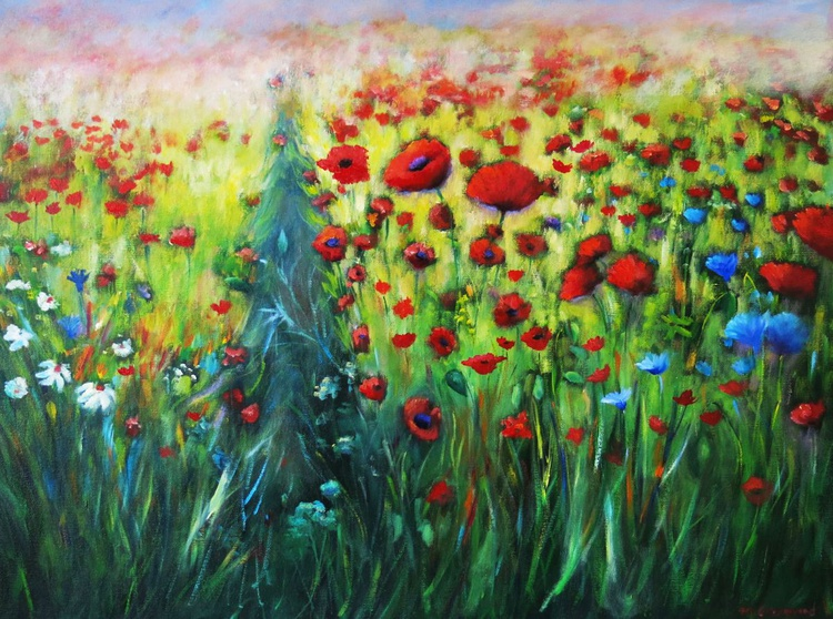 A Host of Poppies - Image 0