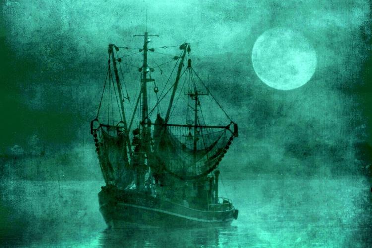 Moonlight Fishing - Canvas 75 x 50 cm - Image 0