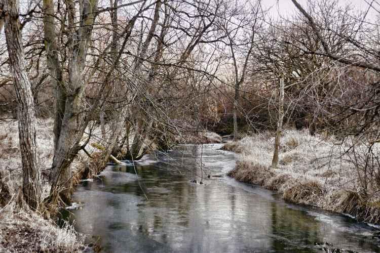 Cold Stream -