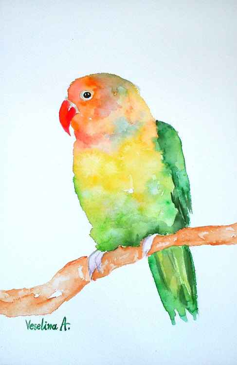 Green parrot watercolour