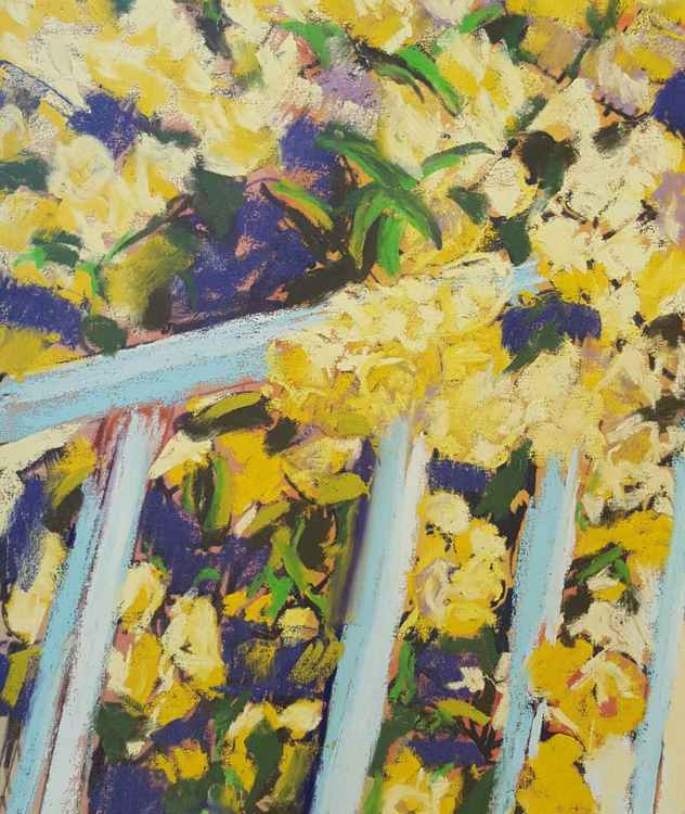 Yellow roses climbing a blue handrail -